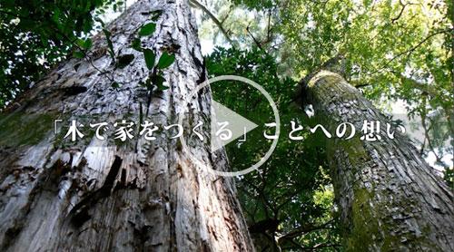 「木で家をつくる」ことへの想い/心と体に良い家を。健康木造ひのき住宅-加子母ひのきの家 / 株式会社 丸二